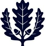 oak-leaf1